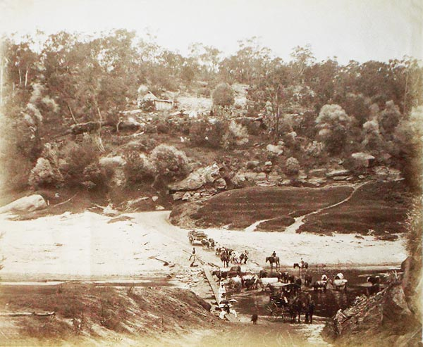 Rural Australian Scene at a River Crossing: Men, Women with Parasols, Carriage with Horses, Wagon and Cattle
