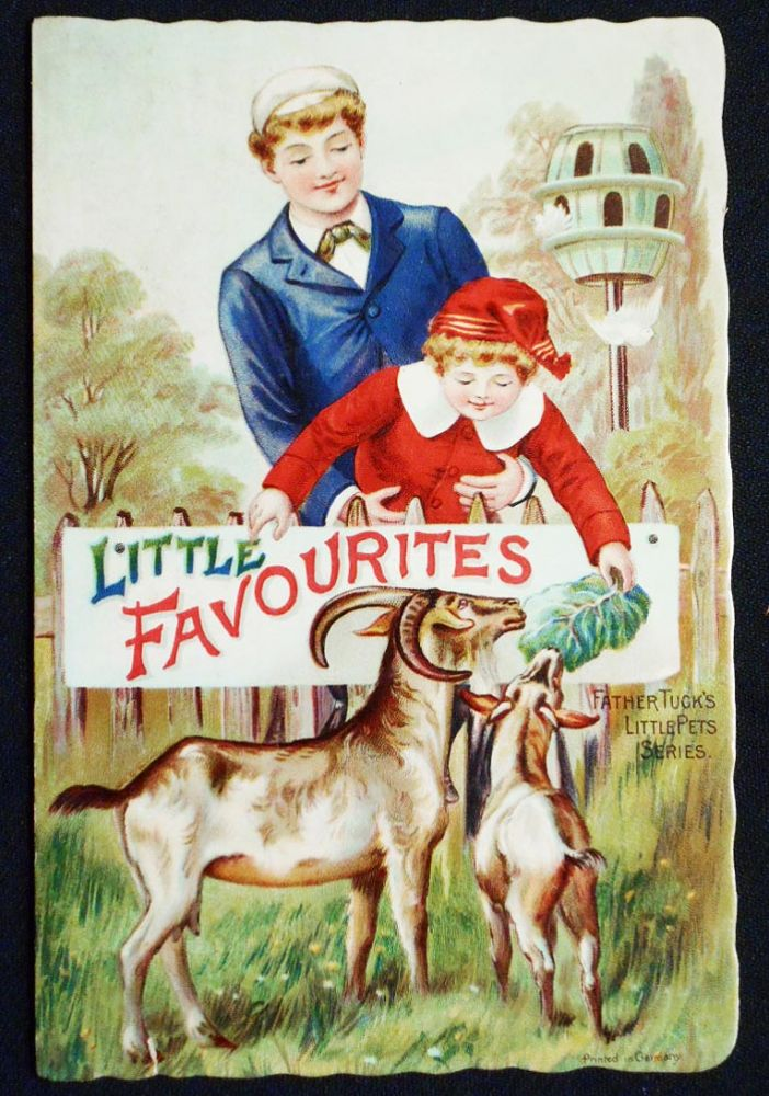 Little Favourites -- Father Tuck's Little Pets Series