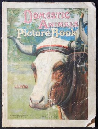 Domestic Animals Picture Book: Canvas